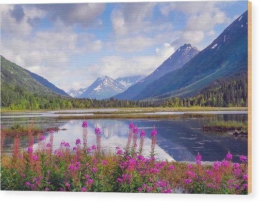 Alaskan Horizons Wood Print