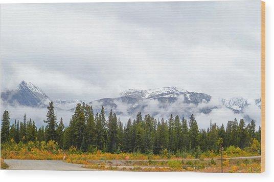 Alaskan Roadside Wood Print
