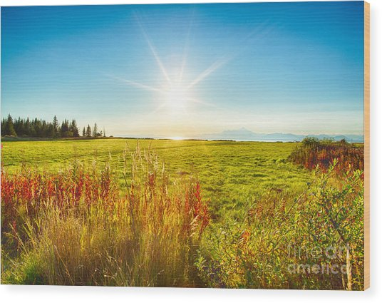 Alaskan Sunburst Wood Print by Paul Karanik
