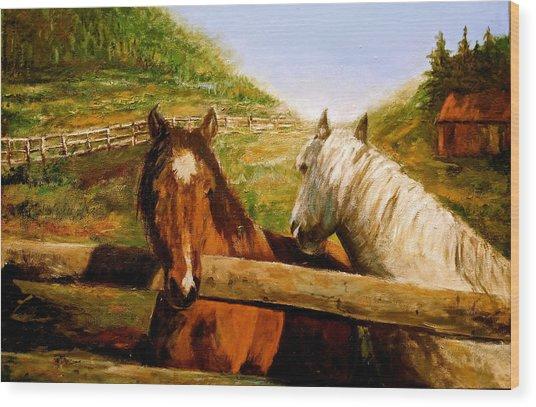 Alberta Horse Farm Wood Print