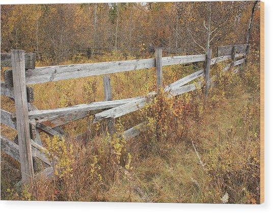 Alberta Ranchlands - Abandoned Corral Wood Print