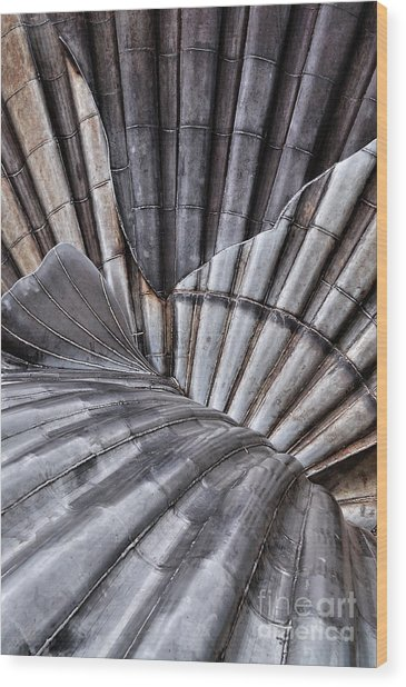 Aldeburgh Shell Abstract Wood Print