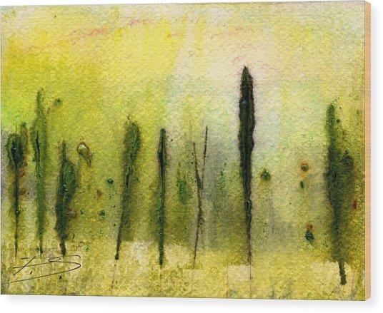 Aleatoric-32713-s Wood Print