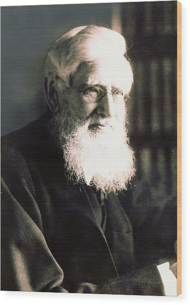 Alfred Russel Wallace Wood Print by American Philosophical Society