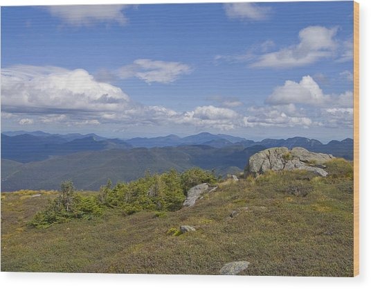 Algonquin Mountain Wood Print