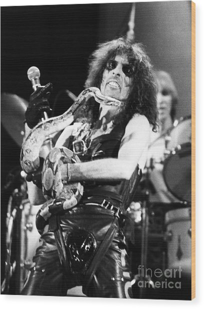 Alice Cooper 1979 Wood Print by Chris Walter