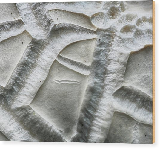 Alien Surface Wood Print