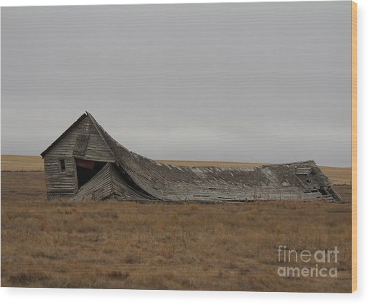 Wood Print featuring the photograph All That Remains by Ann E Robson