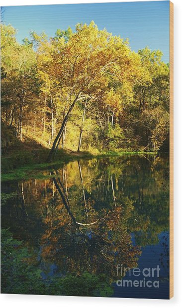 Alley Spring In Autumn Wood Print