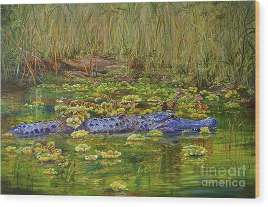 Alligator Pod Wood Print