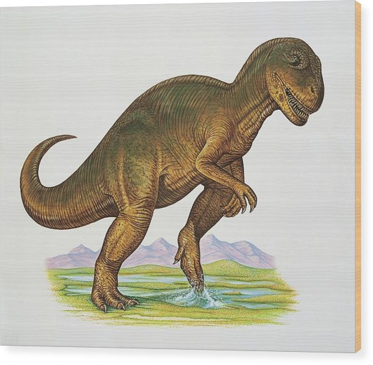 Allosaurus Dinosaur Wood Print by Deagostini/uig/science Photo Library