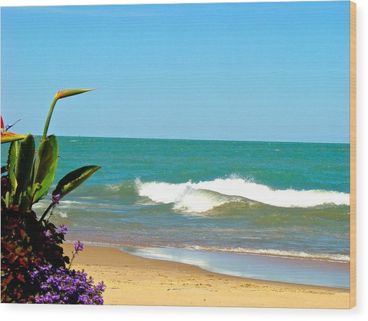 Allow Yourself To Imagine At A Beach Wood Print
