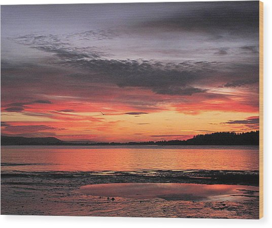 Alluring Sunset Wood Print