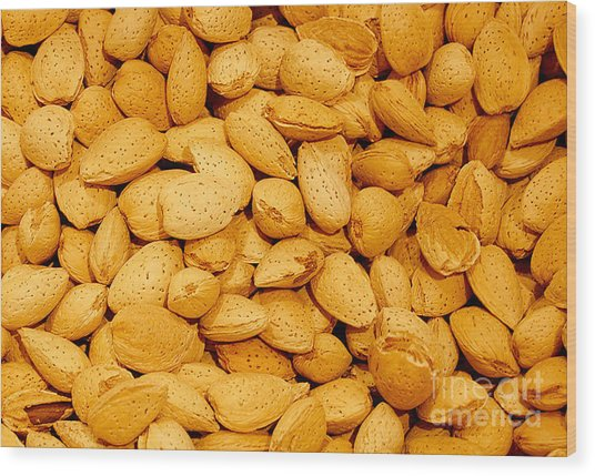 Almonds Wood Print