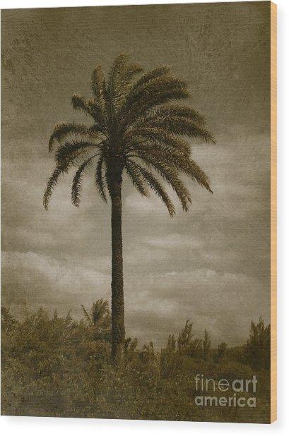 Aloha Palm - No.2047 Wood Print