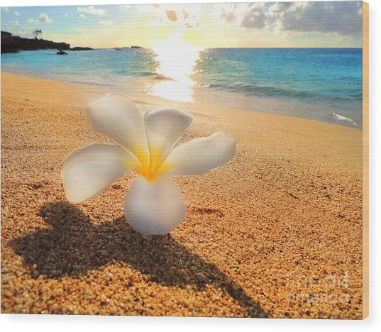 Aloha Paradise Wood Print