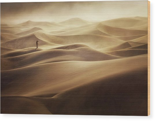 Alone Wood Print by Mirko Vecernik