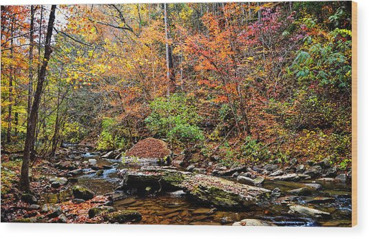 Along Fall Creek Wood Print