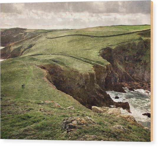Along The Coast Path Wood Print