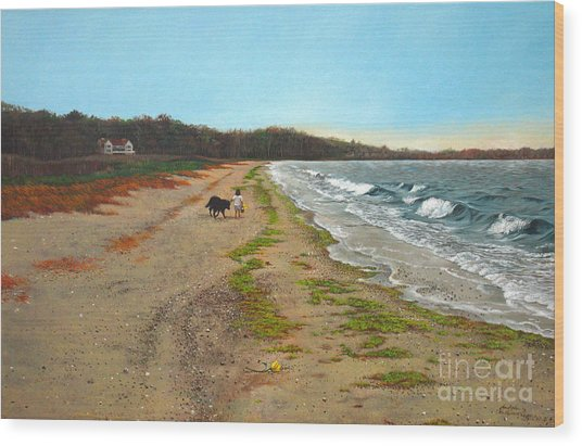 Along The Shore In Hyde Hole Beach Rhode Island Wood Print