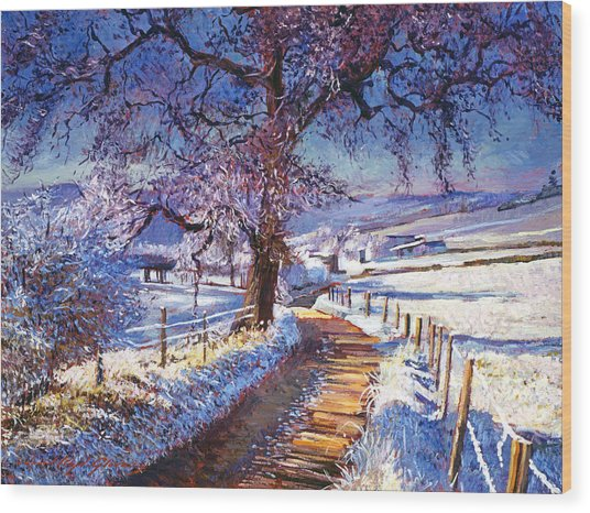 Along The Snow Lined Road Wood Print by David Lloyd Glover