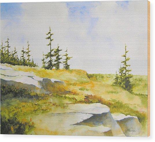 Along The Superior Hiking Trail Wood Print