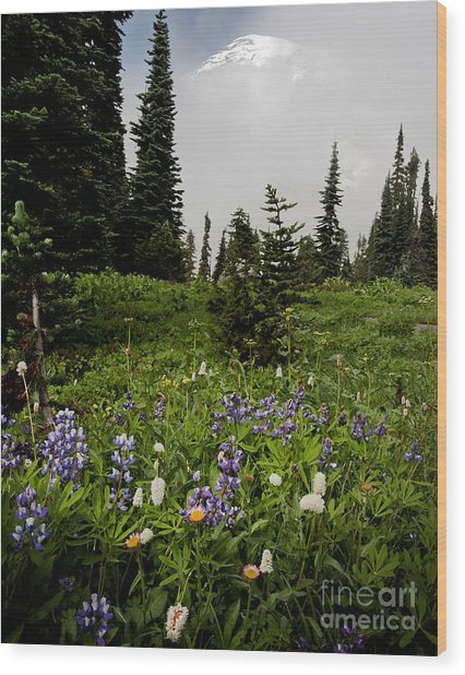Alpine Beauty Wood Print