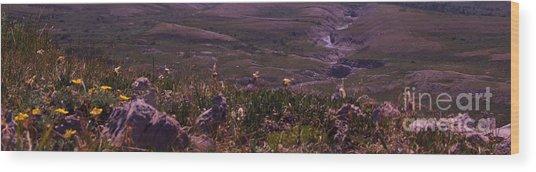 Alpine Floral Meadow Wood Print