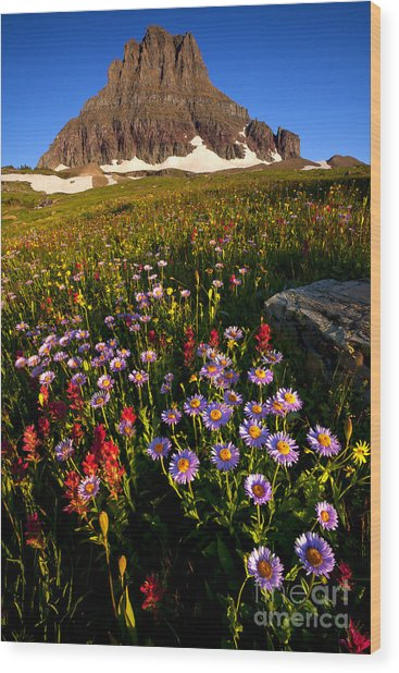 Alpine Meadow Wood Print