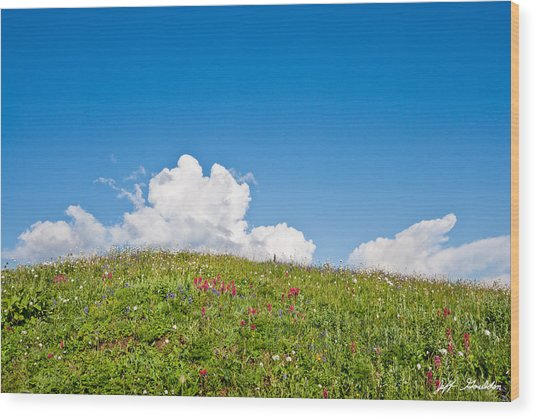 Alpine Meadow And Cloud Formation Wood Print