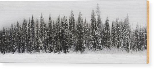 Winter Scene // Whitefish, Montana  Wood Print