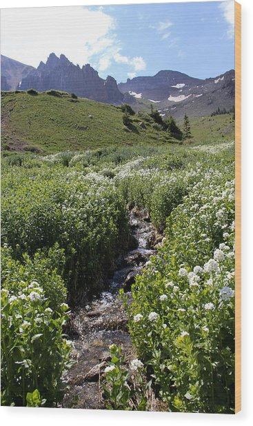 Alpine Stream Wood Print