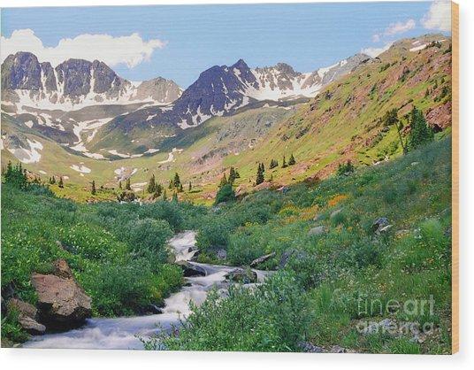 Alpine Vista With Wildflowers Wood Print