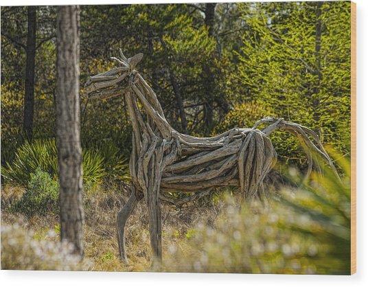 Alys Beach Driftwood Horse Wood Print by Frank Feliciano