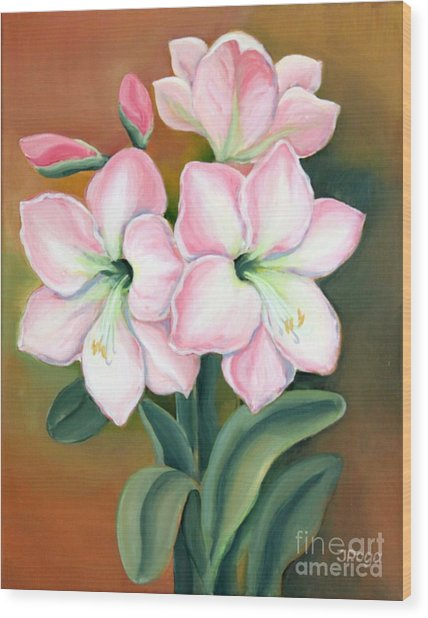 Amaryllis For Ladies Wood Print