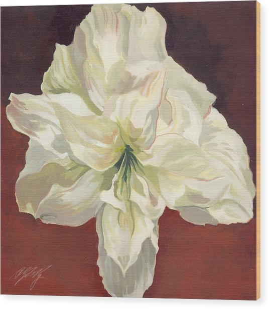 Amaryllis With Red Wood Print by Alfred Ng
