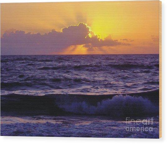 Amazing - Florida - Sunrise Wood Print