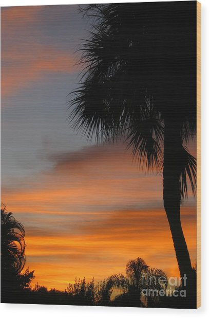 Amazing Sunrise In Florida Wood Print