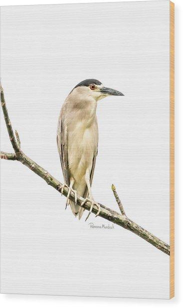 Amazonian Heron Wood Print