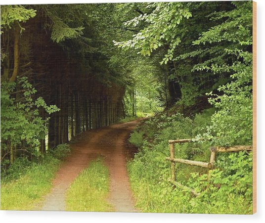 Ambler's Way Wood Print