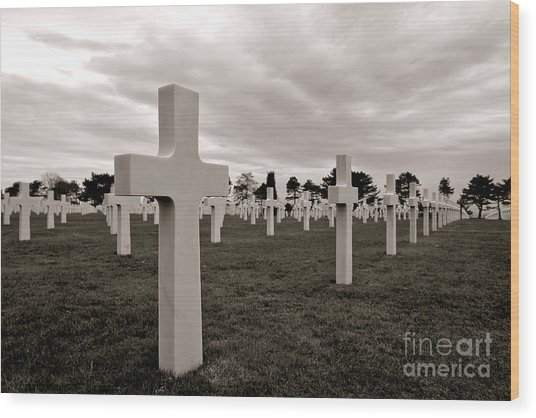 American Cemetery In Normandy  Wood Print