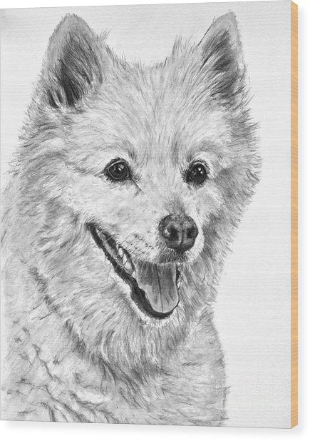 American Eskimo Charcoal Drawing Wood Print