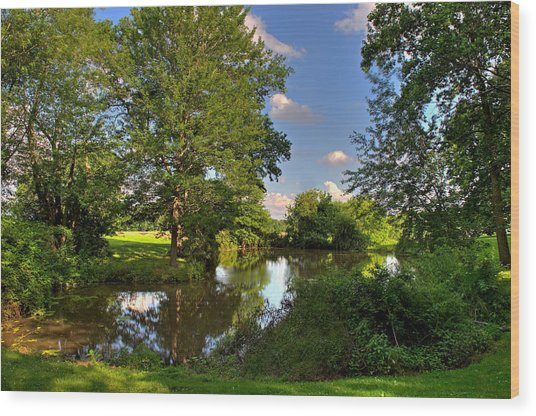 American Farm Pond Wood Print