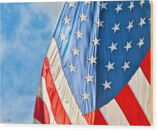 American Flag And All It's Glory Wood Print