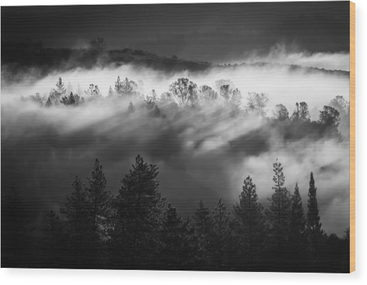 Wood Print featuring the photograph American River Canyon by Sherri Meyer
