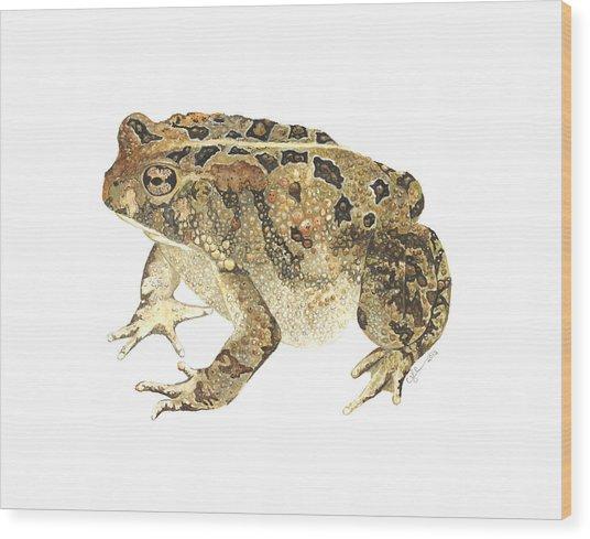 American Toad Wood Print