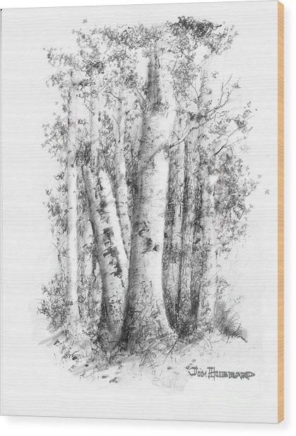 American White Birch Wood Print