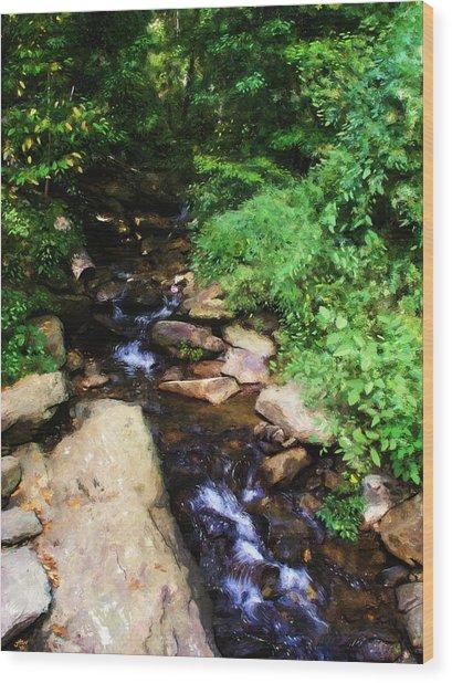 Amicalola Falls Wood Print by Jennifer Hotai