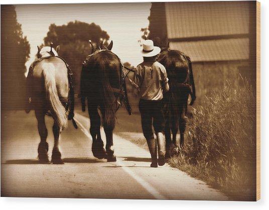 Amish Boy Farmer Wood Print