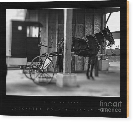 Amish Buggy Parking Wood Print